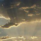 Sun ray beauty by Bonnie Pelton