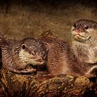 Otters by Bob Culshaw