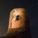 The Tower by Antonio Zarli