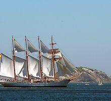 Grandes Veleiros, Tall Ship Elcano in Rio by Quasebart