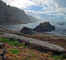 Cape Arago Oregon by Randall Ingalls