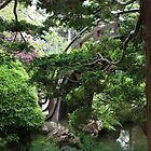 Japanese Tea Gardens S.F. #1 by E.R. Bazor