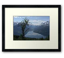 Lonly tree Framed Print