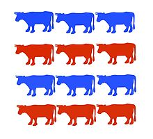 RED WHITE AND BLUE COWS by swannonthefarm
