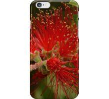 Beautiful Bottlebrush Flower iPhone Case/Skin