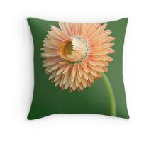 Peach Strawflower Throw Pillow