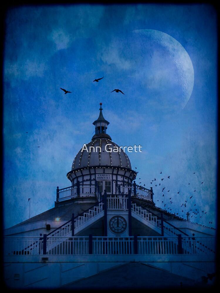 Camera Obscura - Eastbourne Pier by Ann Garrett