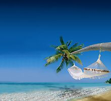 Beach hammocks in Bora Bora by Digital Editor .