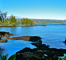 Hilo Bay by David Davies