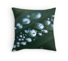 silver beads Throw Pillow