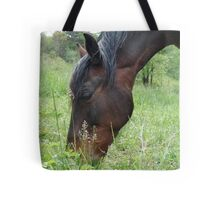 TOBY, THE RACKING HORSE Tote Bag