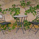 Cosy spot under the vines by triciamary