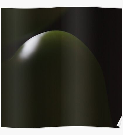 dark green light Poster