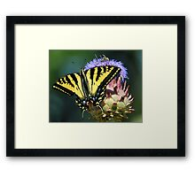 Buen Provecho Framed Print