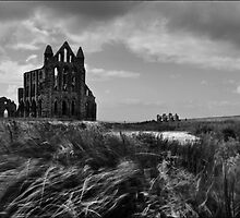 Whitby Wind by Brian Avery