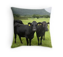Kerry cows Throw Pillow