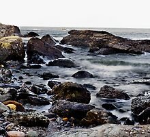 Rocky Rhode Island Coast by Jim Haley