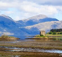 Tidal Reaches of Castle Stalker by maureen bracewell