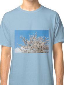 Cherry blossom in Korea Classic T-Shirt