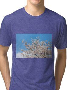 Cherry blossom in Korea Tri-blend T-Shirt