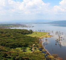 Beautiful view in Kenya by Nesling