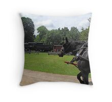 The Way it used to be: Westfield, Ontario, Canada Throw Pillow
