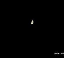 The Fabulous Moon by Amedori
