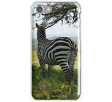 Zebra Keeping Watch iPhone Case/Skin