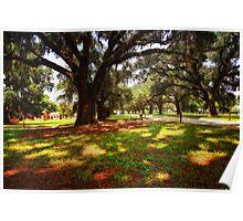 Boone Hall Plantation - Entrance Poster