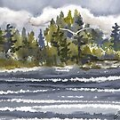 Approaching Storm in Bester's Bay by Joan A Hamilton