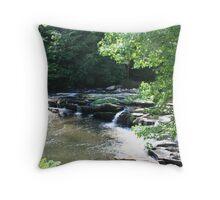 A Beautiful Stream Throw Pillow