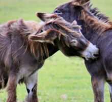 Mutual grooming - donkeys Sticker