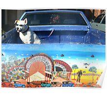 Desert Dog..... Broken Hill Poster