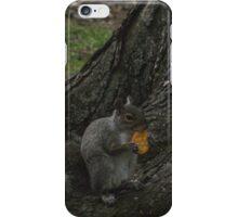 Sunday Squirrel Brunch iPhone Case/Skin