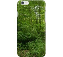 Summer Forest Walk iPhone Case/Skin