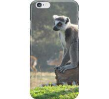 The Thoughtful Lemur iPhone Case/Skin