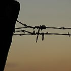 Fencepost and wire in silhouette by agenttomcat