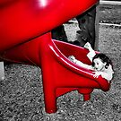 The Red Slide by Sandra Moore