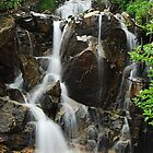 Falls at Chinook Pass by Tori Snow