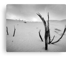 Dune 1 Canvas Print
