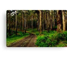 """Garvey Track"" Canvas Print"