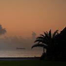 New Day in Dar es Salaam. by Warren. A. Williams