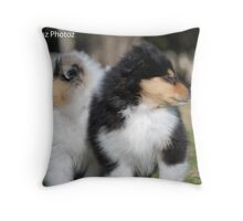 Two lovely Collie Roughs Throw Pillow