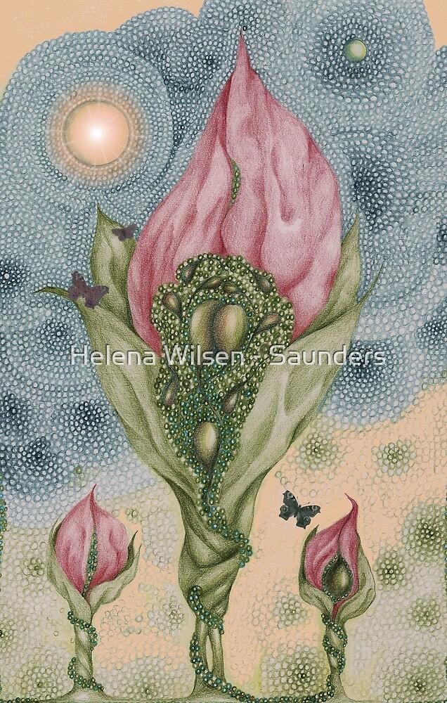 The Three Butterflies by Helena Wilsen - Saunders