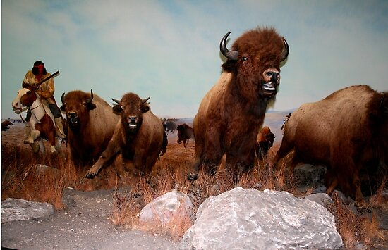 The Buffalo Hunt ... by Larry Trupp