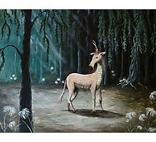 In the Glade of the Qilin Photographic Print
