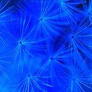 Cosmic Blue Dandelion by Michael Matthews