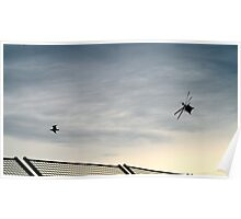 Helicopter and Seagull competing at Albert Park Melbourne Poster