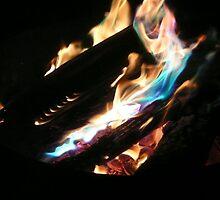 Open Fire!!! by Larry Trupp