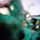 Green Water, Great Barrier Reef by Terri-Anne Kingsley